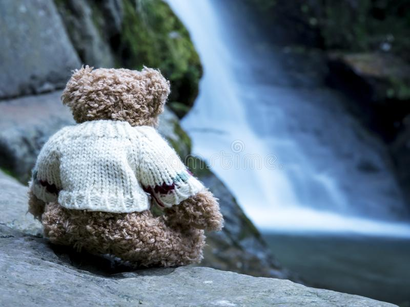 Teddy bear contemplating the river royalty free stock photos