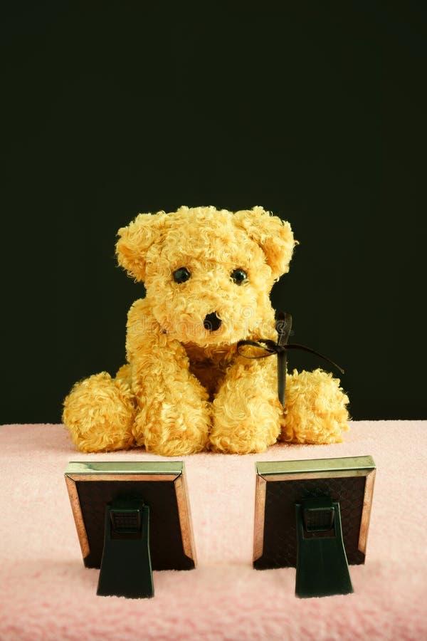 Teddy Bear, der seine zwei Eltern beklagt stockfotografie