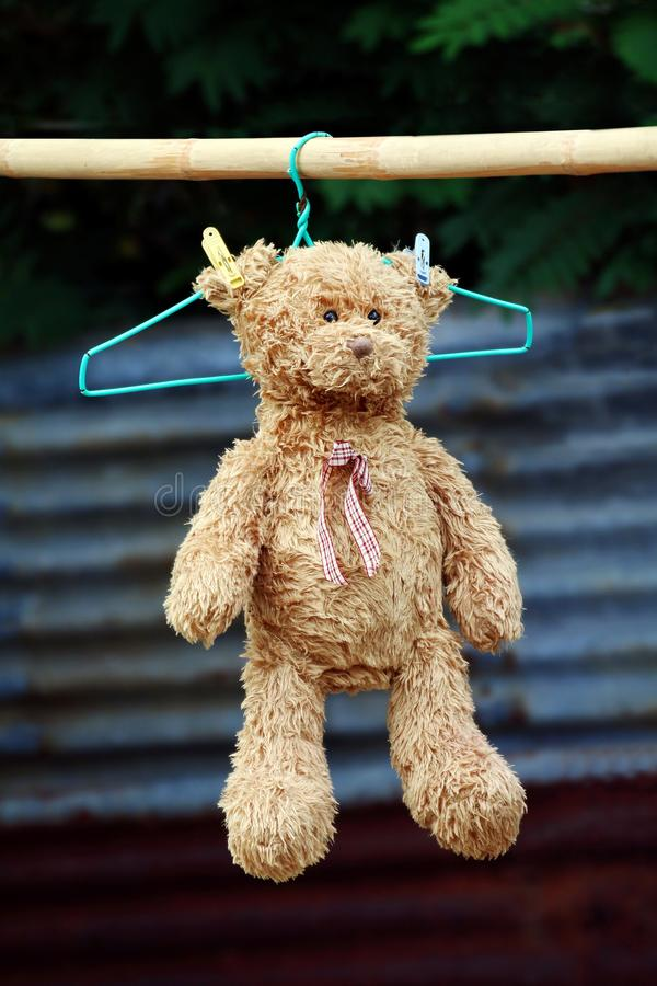 Teddy bear doll soft on hanging to dry clothesline sunbathing in sunlight selective focus. A Teddy bear doll soft on hanging to dry clothesline sunbathing in royalty free stock photos
