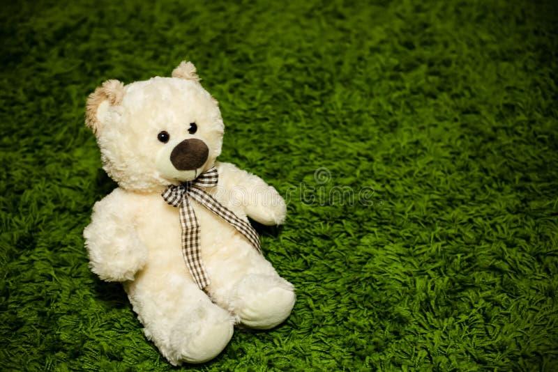 Teddy Bear en la alfombra fotografía de archivo libre de regalías