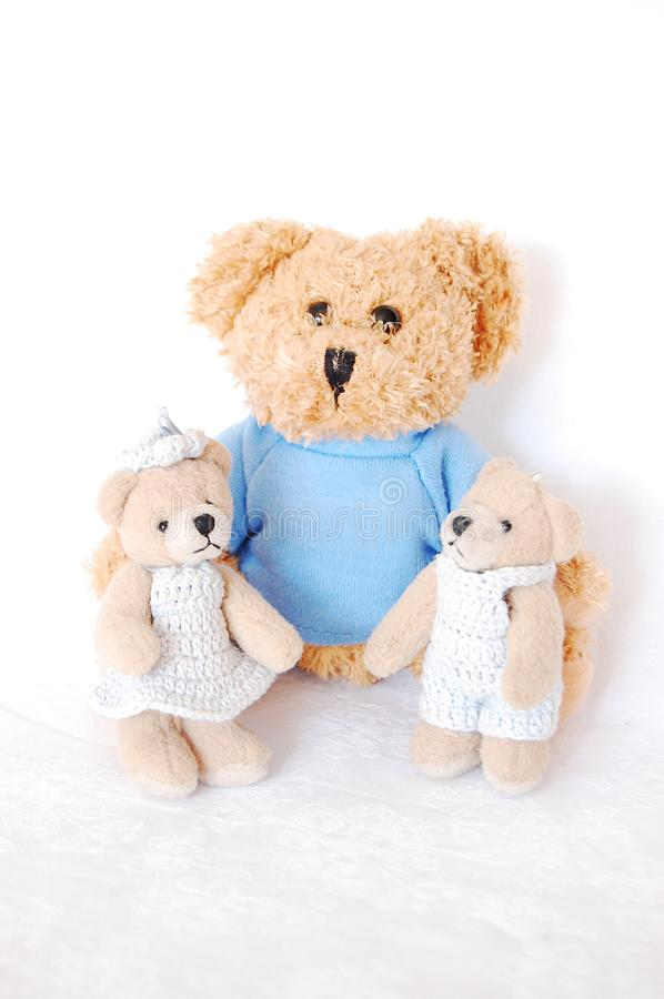 Download Teddy-bear family stock photo. Image of teddy, brown, toys - 9543100