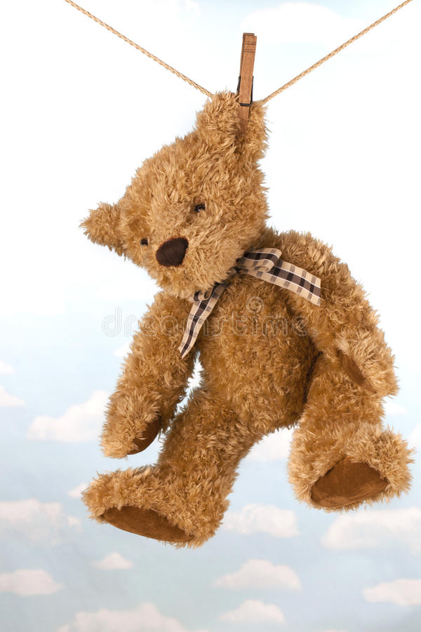 Teddy Bear Hanging On Clothes Line Drying Stock Image