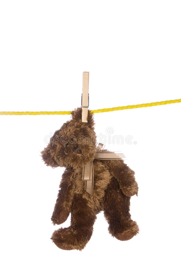 Teddy bear hanging from a clothesline. A teddy bear hangs from a clothesline after a good washing and is isolated on white. Image was shot against a lighted royalty free stock images