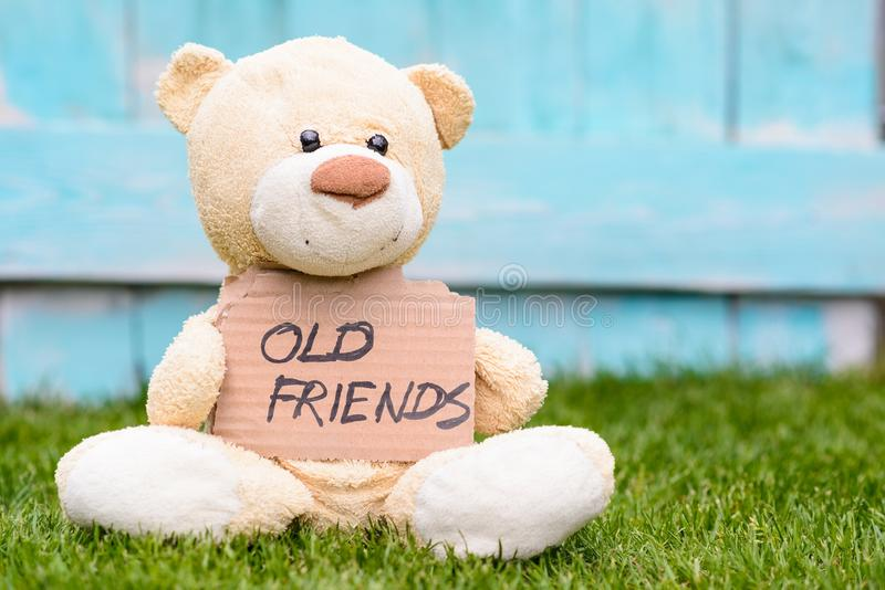 Teddy bear holding cardboard with information Old Friends royalty free stock photography
