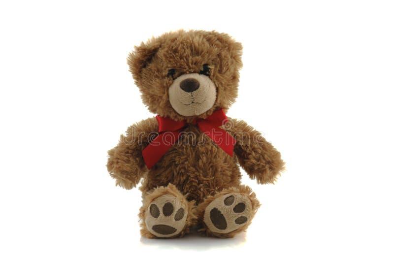Teddy bear isolated on white background.  stock photos