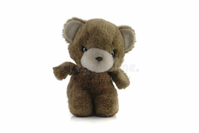 Teddy bear isolated on white background.  stock images