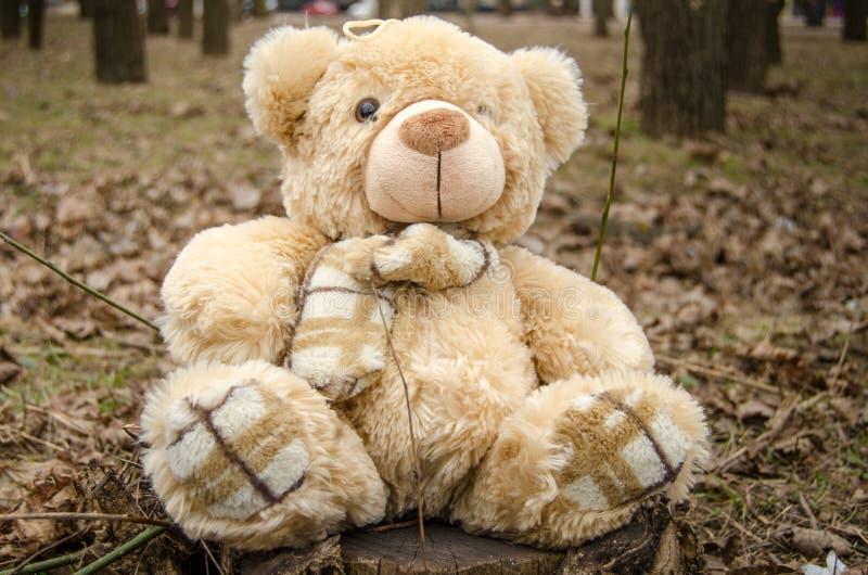 Teddy Bear leksak arkivfoton
