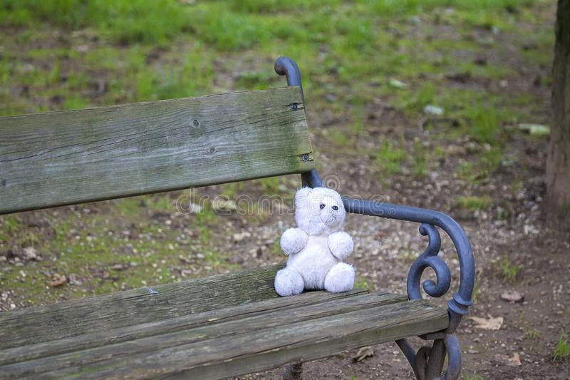 Teddy bear lost on bench stock images