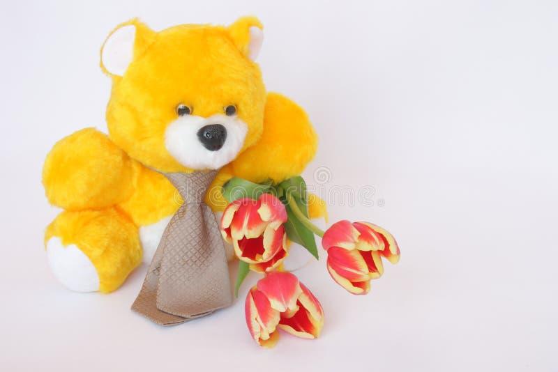 Teddy Bear met band, tulpenbloemen - voorraadfoto's stock afbeeldingen