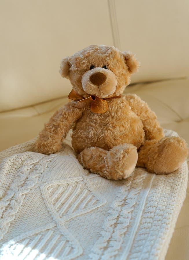 Teddy Bear mit dem Band, das auf gemütlicher gestrickter Strickjacke der weißen Weihnacht auf beige ledernem Sofahintergrund sitz stockbild