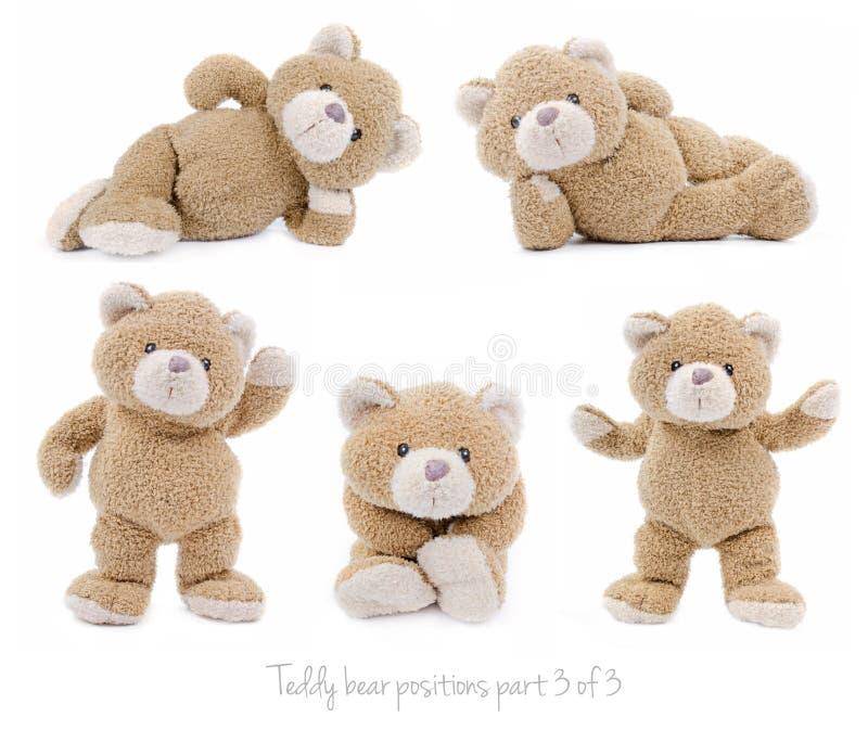 Teddy bear positions stock photo