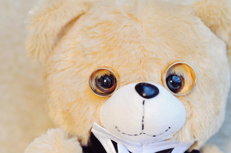 Teddy Bear with Rings stock photography