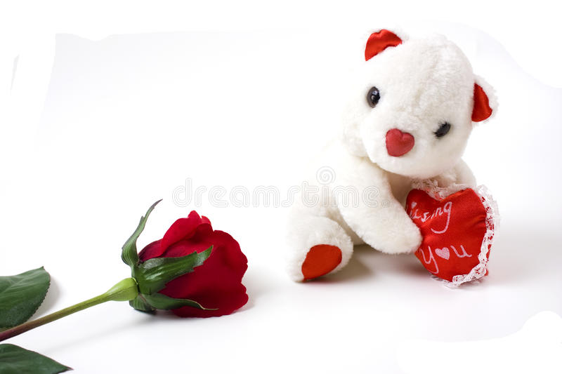 Download White Teddy Bear And Red Rose Stock Image