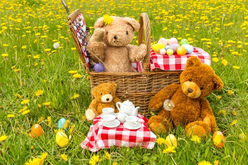 Teddy Bear`s Picnic in summer with bright yellow dandelions. Teddy Bear`s picnic with bright yellow dandelions , Easter eggs and red gingham table cloth royalty free stock photography