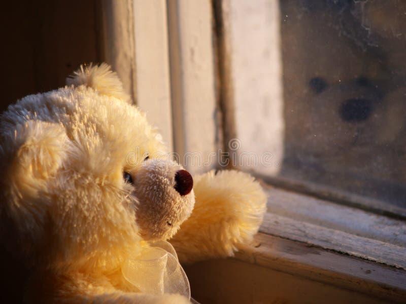 teddy bear samotny fotografia stock