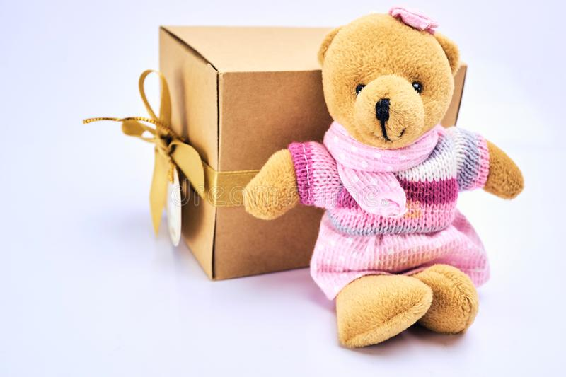 Teddy bear sit with gift box in brown box on white background. For gift royalty free stock images