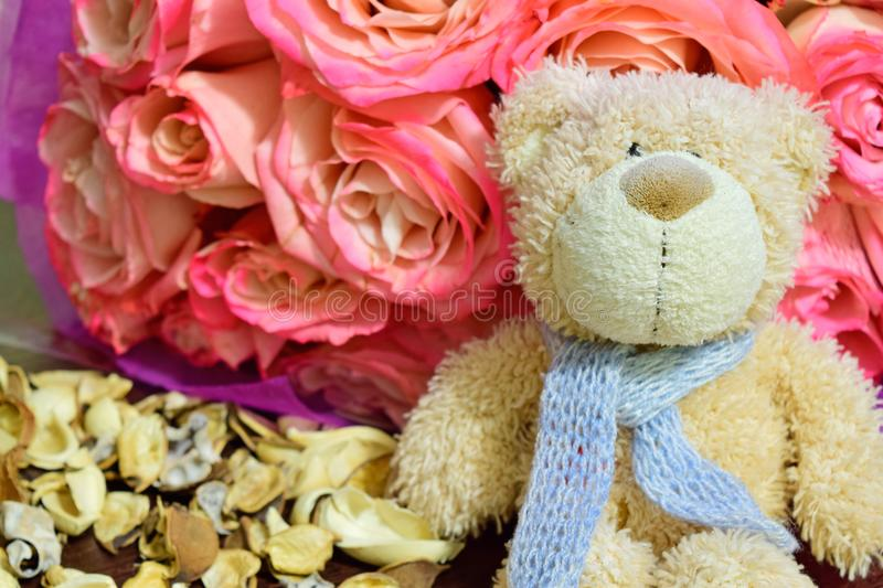 Teddy bear sits with a bouquet of roses royalty free stock images