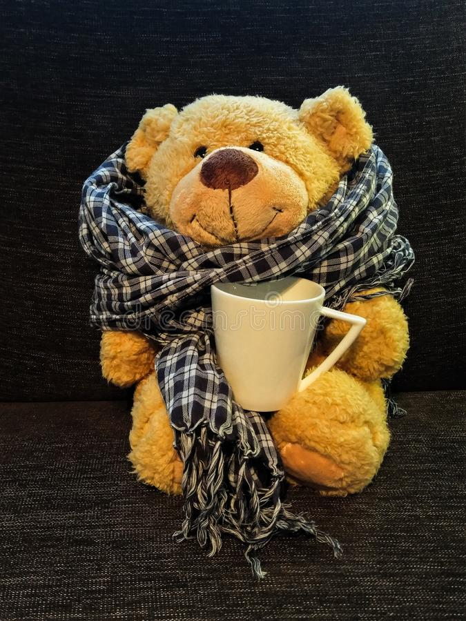 A teddy bear sitting on a couch with a scarf and a cup of tea royalty free stock photo