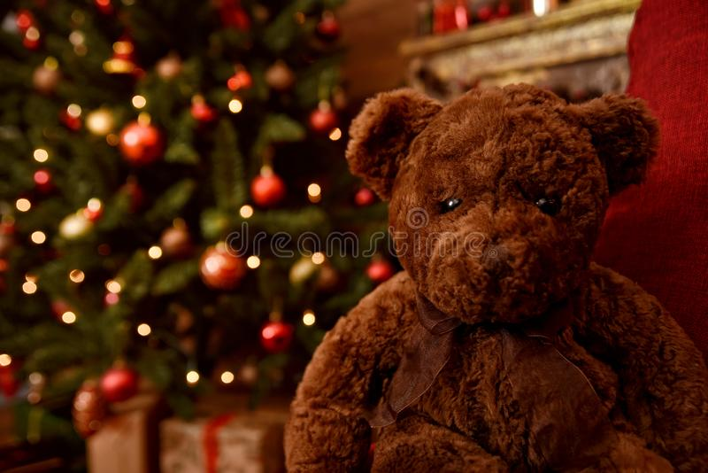 Teddy bear sitting in front of Christmas tree. Holiday mood. stock image