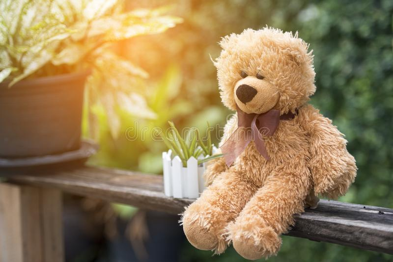 Teddy bear sitting in the park early morning time with sun light. Child play on play ground in park stock photography