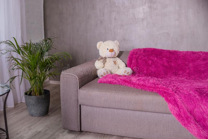 Teddy Bear - sitting on sofa couch with purple blanket, plaid. Palm tree as home plant is near sofa.Broun beige teddy. Teddy Bear - sitting on sofa couch in royalty free stock image