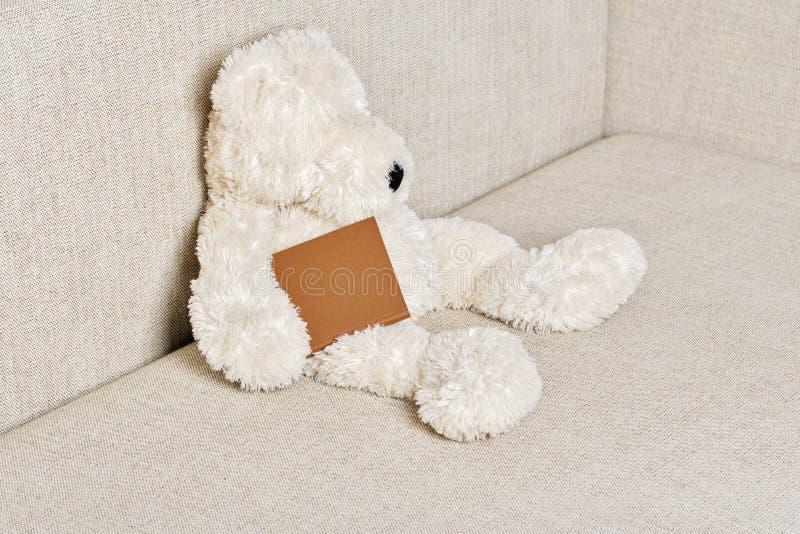 Teddy bear is sitting on the sofa. White Teddy bear is sitting on the sofa with a book in hand royalty free stock photo