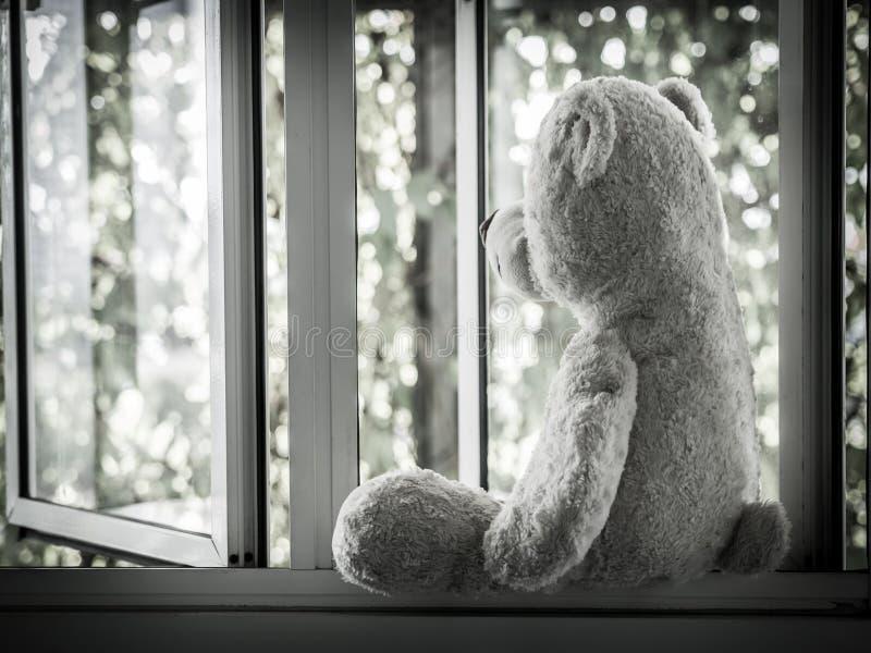 Teddy Bear Sitting solo en la ventana que parece hacia fuera lateral imagen de archivo libre de regalías