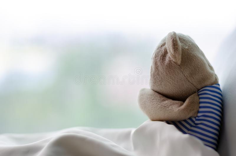 Teddy bear sobbing on bed in the sadly day stock photos