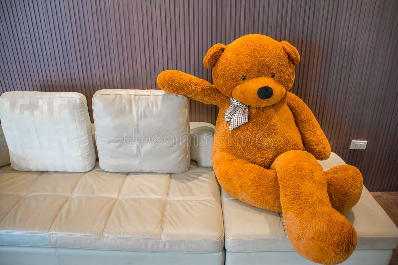 Teddy bear on the sofa stock photos