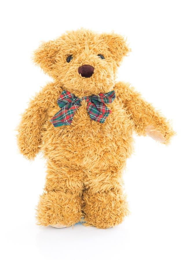 Teddy bear standing on white royalty free stock photos