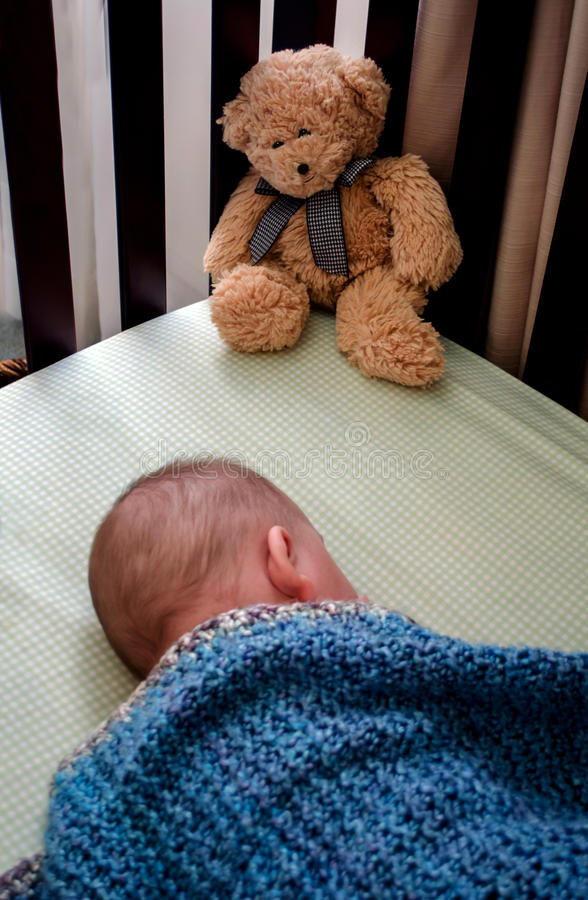 teddy bear stands guard stock photography