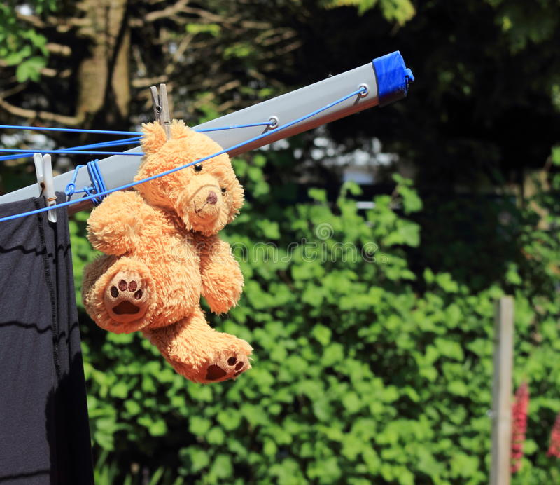 Teddy bear strung up to dry. royalty free stock photography