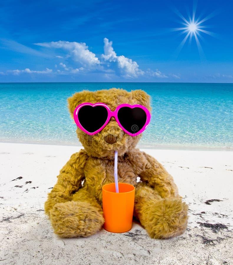 Teddy bear in the beach. Teddy bear sunbathing on a tropical beach and drinking royalty free stock images
