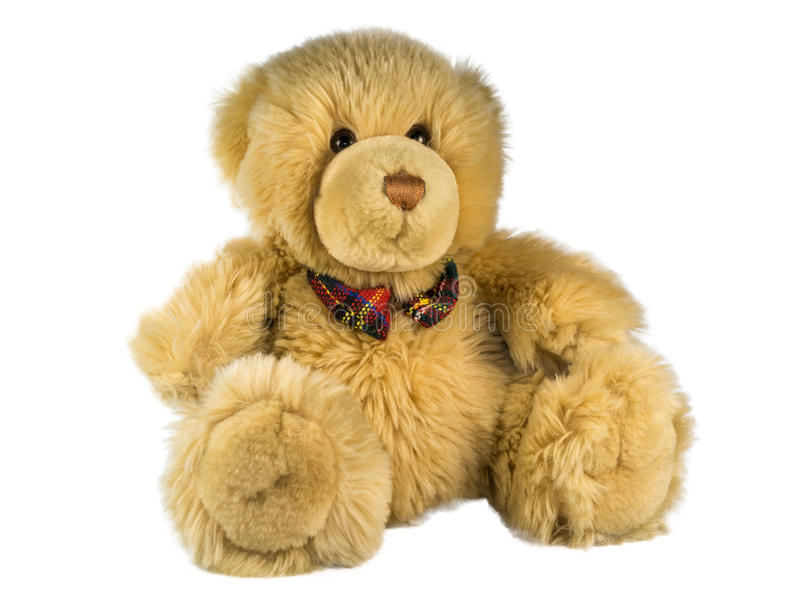 Teddy bear on a white background royalty free stock image
