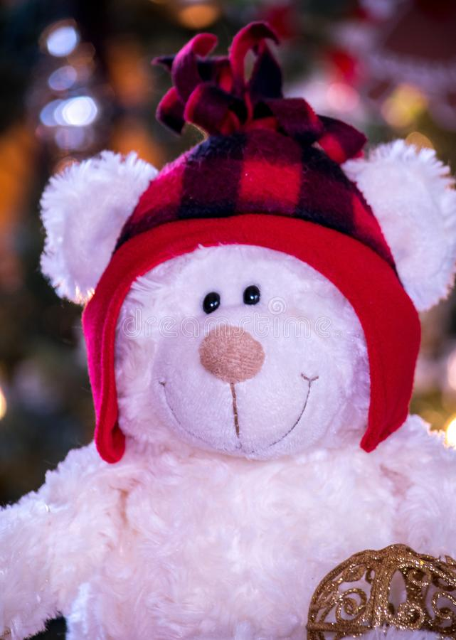 Teddy bear in winter hat closeup stock photo