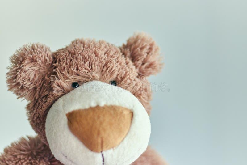 Teddy bearchildren`s toy teddy bear isolated on a light background. closeup of a teddy bear`s head royalty free stock photography