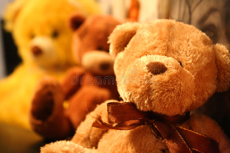 Teddy bears stock photos