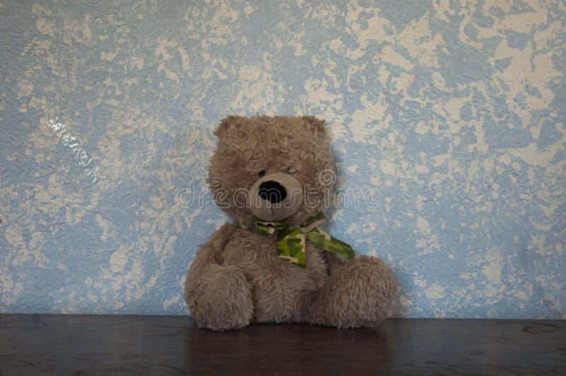 Teddy Bears classico contro una parete blu Brown e Camo fotografia stock libera da diritti