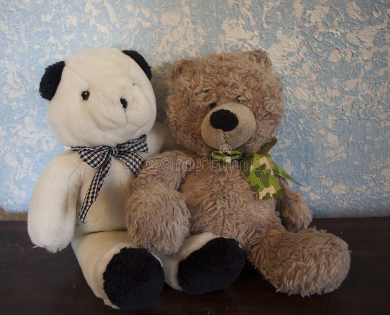 Teddy Bears classico contro una parete blu Brown e Camo con l'orso in bianco e nero fotografia stock