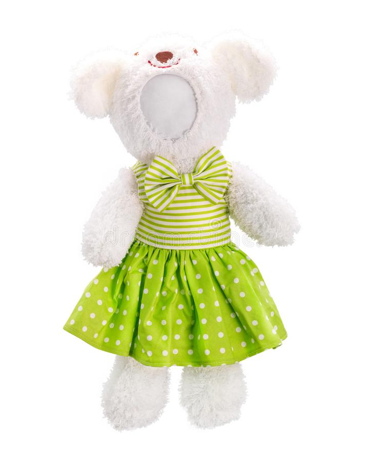 Teddy bears doll isolated on white background. Bear`s doll in green dress uniform. Blank face toy for design. Dolls royalty free stock images