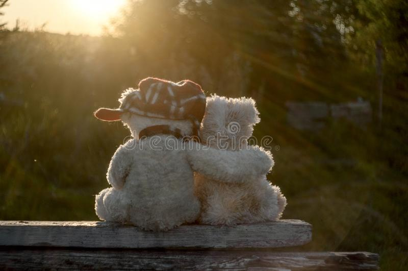 Teddy bears in love hugging on the railing of the arbor stock photos