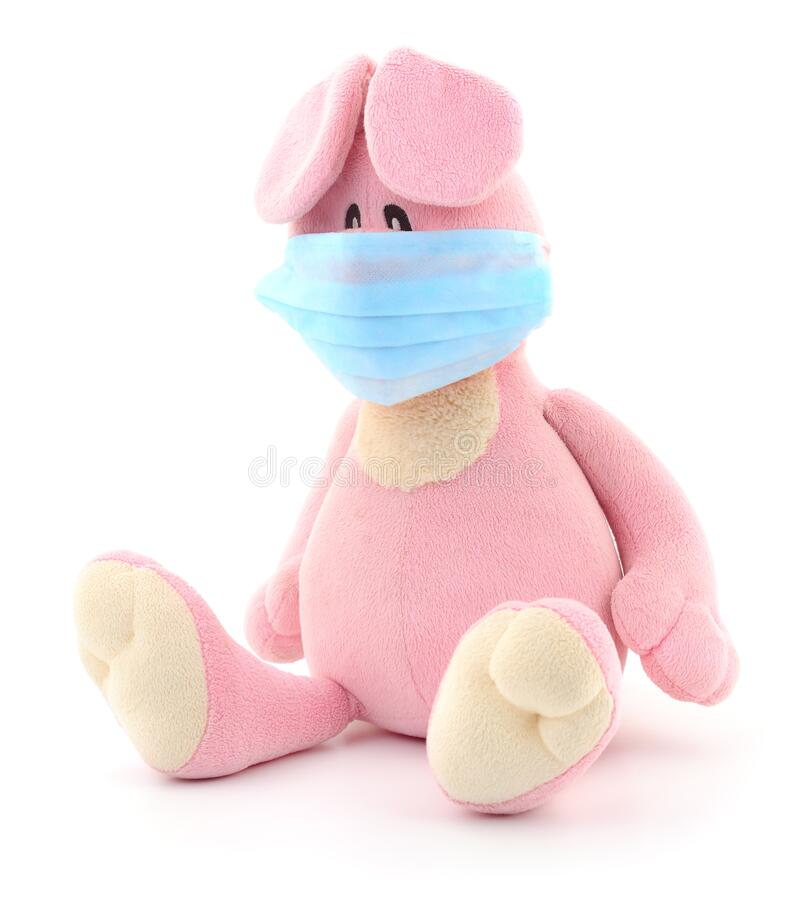 Teddy rabbit with protective face mask royalty free stock photography