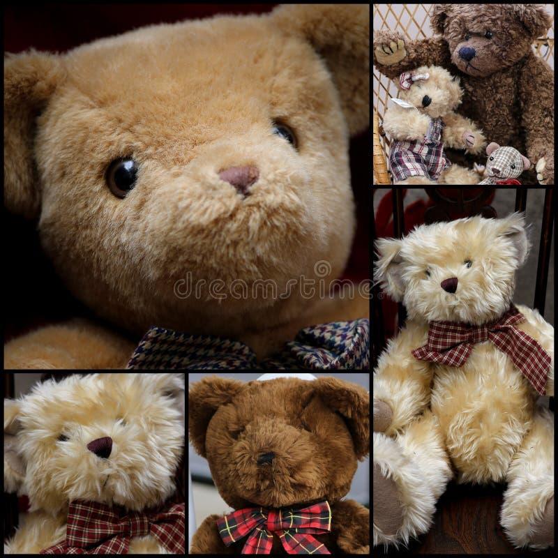 Teddy Set Collage sveglio immagini stock