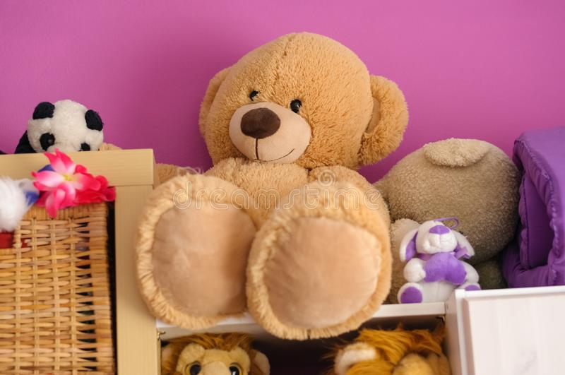 Teddy royalty free stock photo