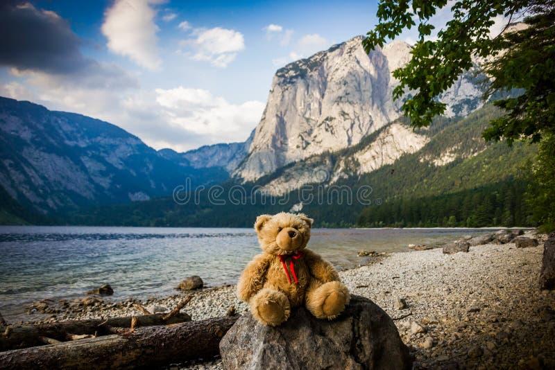 Teddybär in Österreich stockfotografie