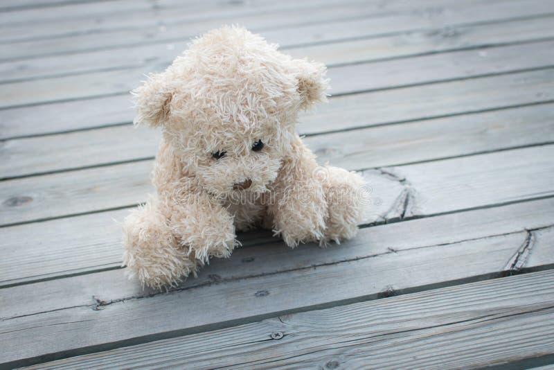 Teddybär allein lizenzfreie stockfotografie