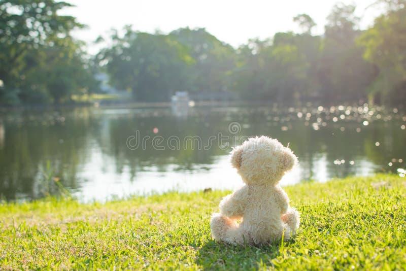 Teddybär allein stockbild