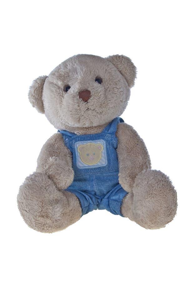 Teddybär in den Dungarees, getrennt auf Weiß lizenzfreie stockbilder