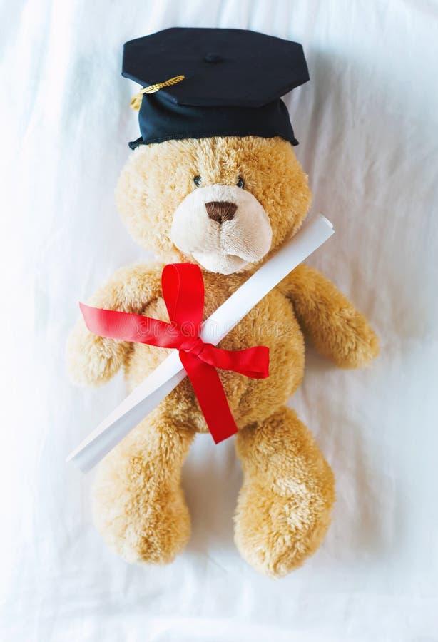 Teddybär in der Staffelungskappe, die sein Diplom hält stockfoto