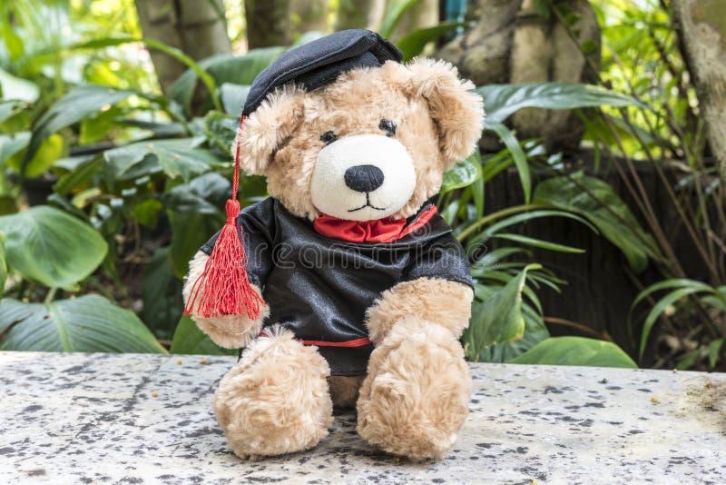 Teddybär mit Staffelungskleid lizenzfreies stockfoto